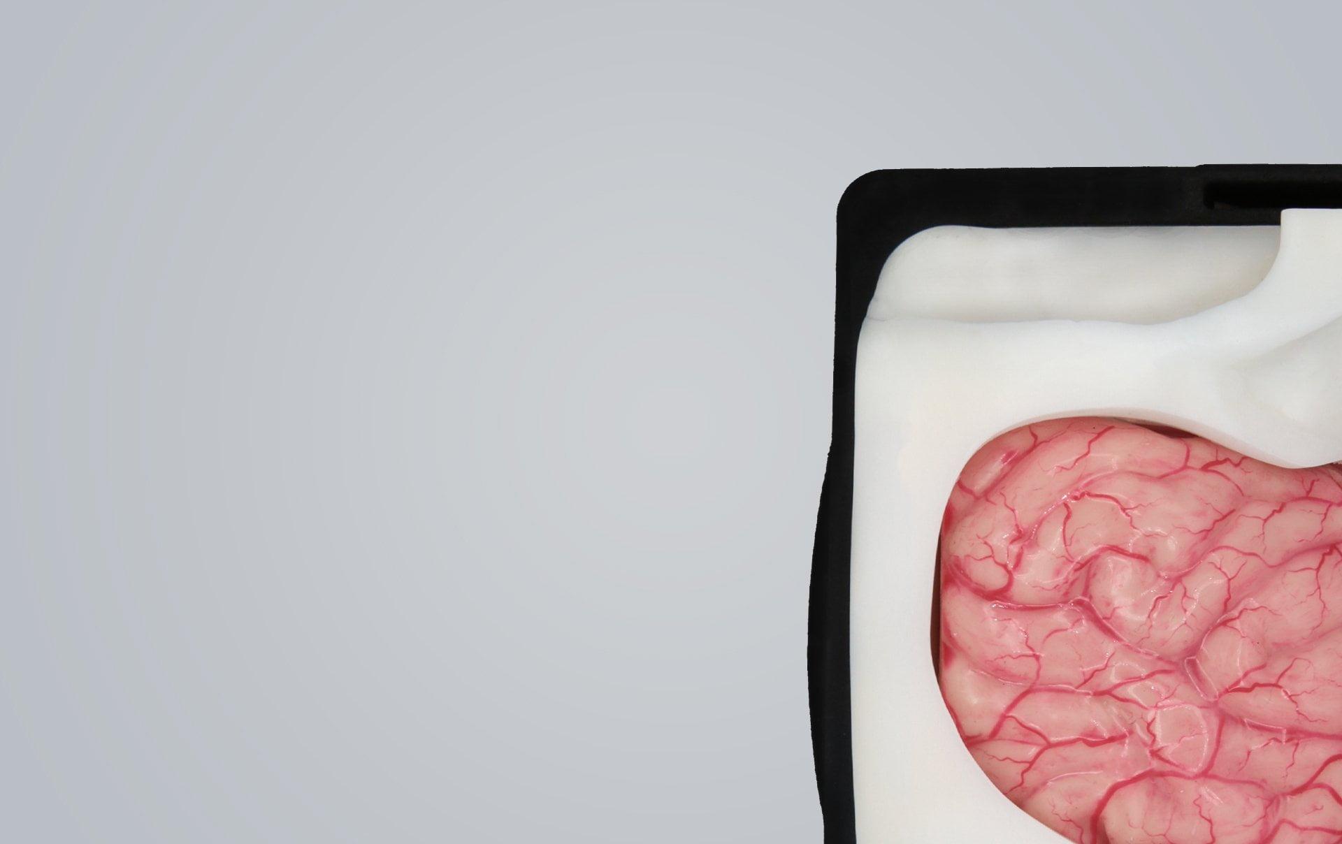 UpSurgeOn Academy: The revolution of cadaver-free training